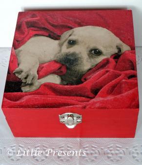 Schmuckbox, Geschenkbox Hundewepe